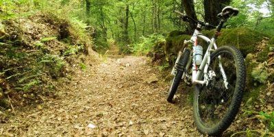 Bici de montaña en el sendero que atraviesa uno de los bosques del concello de A Bola (Ourense)
