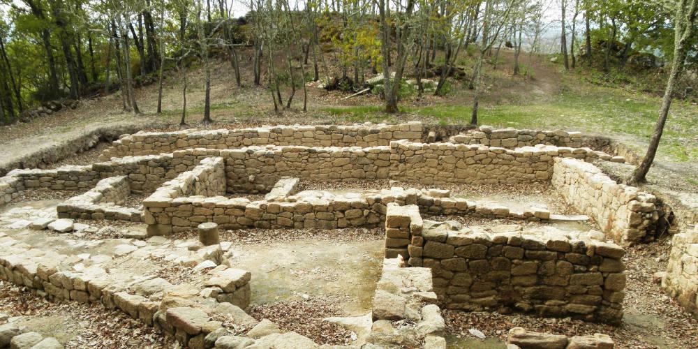 Muros de piedra del lugar arqueológico de Armea, rodeados por carballos jóvenes, en Allariz (Ourense)